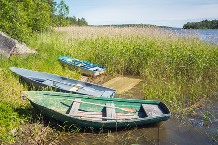 rowboats: Small rowboats lay on the coast of still lake in reed