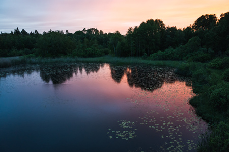 ladoga: Still lake landscape at sunset. Colorful evening sky and dark trees silhouettes reflected in water