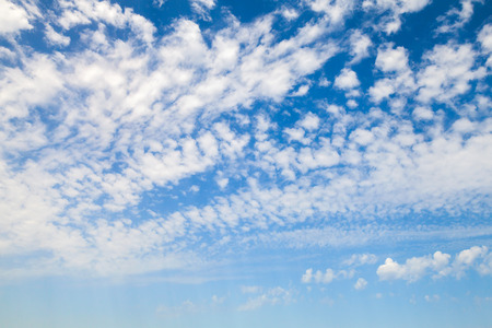altocumulus: Natural blue sky with white altocumulus clouds, background photo texture
