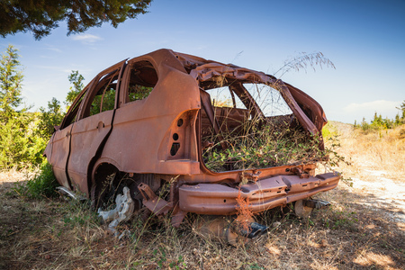 Abandoned rusted car body with growing grass inside stands in summer garden