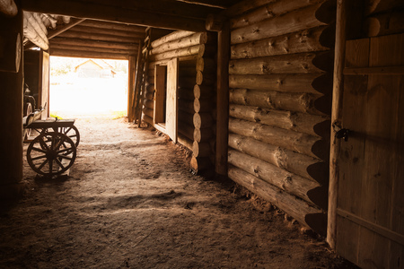 lumber room: Ancient rural Russian interior. Corridor with walls made of rough logs and closed door in the end Stock Photo