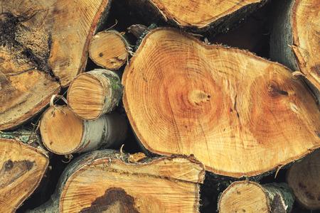 chunks: Stack of firewood, fresh birch chunks, close up photo