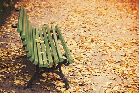 tonal: Empty green wooden bench stands on the walking road of autumnal park with yellow fallen leaves. Retro stylized photo with tonal correction filter effect, old style
