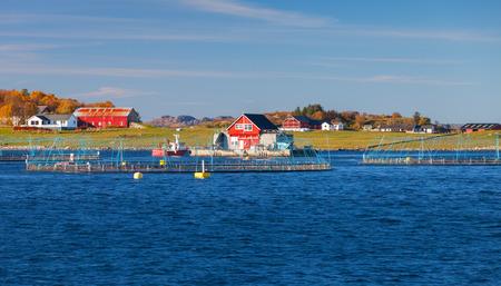 Norwegian fish farm for salmon growing. Sea fjord