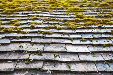 tiling: Old stone roof tiling with green moss growing over it, photo background with selective focus Stock Photo