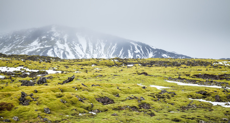Misty Icelandic landscape with green moss growing on rocks and snowy mountains on horizon, South coast of Iceland Stok Fotoğraf - 75813757