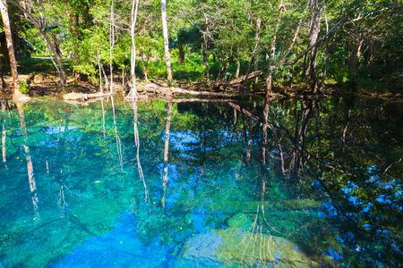 森林、ドミニカ共和国の風景のまだ青い湖