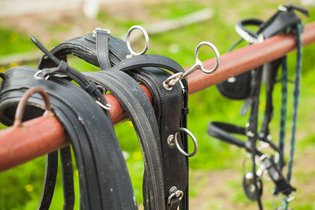 Horse harness hanging on the railing of the ranch