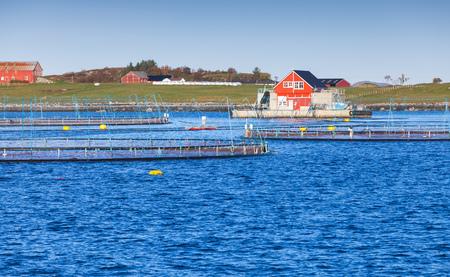 Fish farm for salmon production in natural environment. Norwegian Sea fjord, Trondheim region