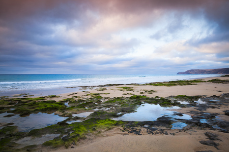Wet coastal stones with seaweed on the beach of Porto Santo island, Madeira archipelago, Portugal