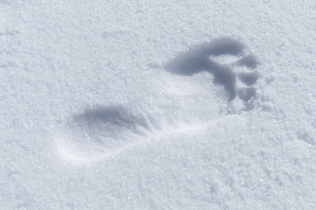 Humans bare foot imprint in white snow, close-up photo 版權商用圖片