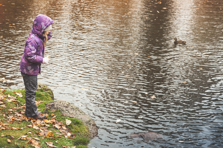 Little girl feeds ducks in public autumn park