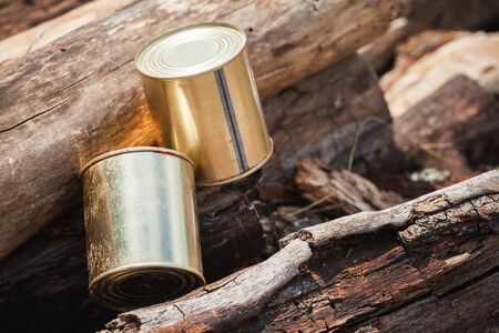 Two cans of canned meat lay on logs, close-up photo. Basic hike food