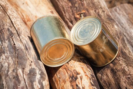 Two cans of canned beef lay on logs at sunny day, close-up photo. Basic hike food
