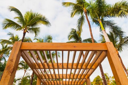 Wooden sunshade structure and palm trees are under blue sky at sunny summer day Zdjęcie Seryjne