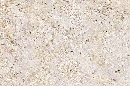 Shelly limestone is a highly fossiliferous limestone, composed of a number of fossilized organisms. Background texture Standard-Bild