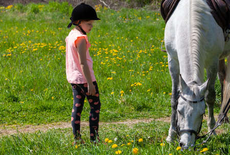 Little European girl rides a white horse breed Orlov trotter at sunny day