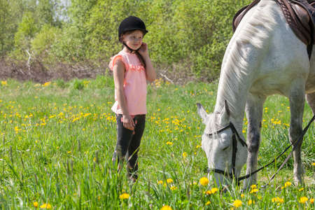 Little girl in pink stands near a white horse breed Orlov trotter at sunny day