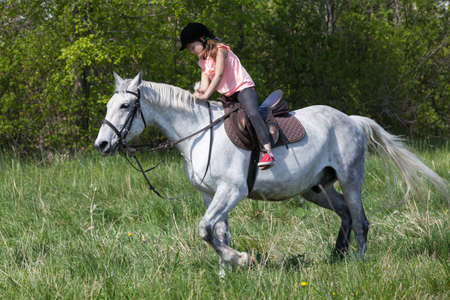 Little European girl rides a white horse breed Orlov trotter at sunny summer day