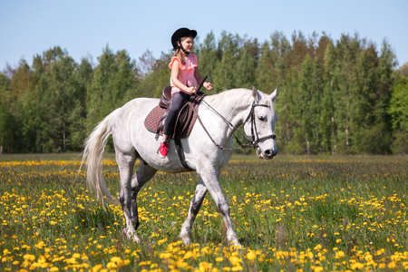 Little girl in pink rides a white horse at sunny day