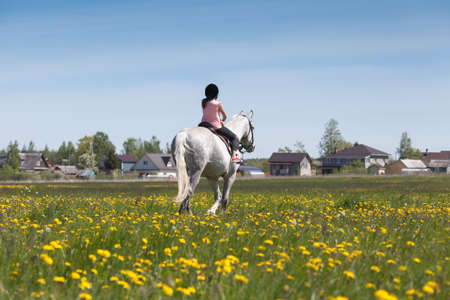 Little girl rides a white horse breed Orlov trotter over a meadow at sunny summer day, rear view Imagens