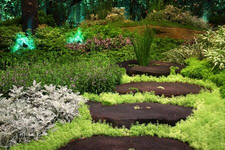 Garden with wooden stepping path in landscape Stock Photo