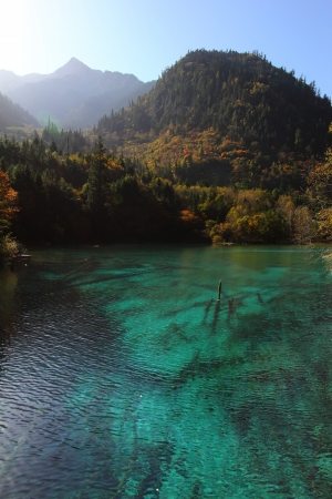 Scene at a lake in UNESCO World Heritage Site Jiuzhaigou Valley photo