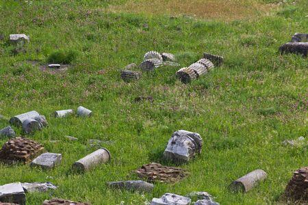 columnas romanas: Antiguas columnas romanas excavadas acostado en un campo de hierba