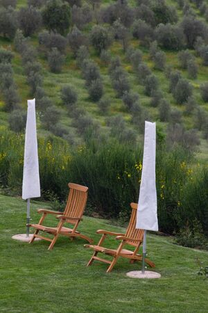 retreat: A typical Tuscan retreat with deck chairs overlooking olive trees