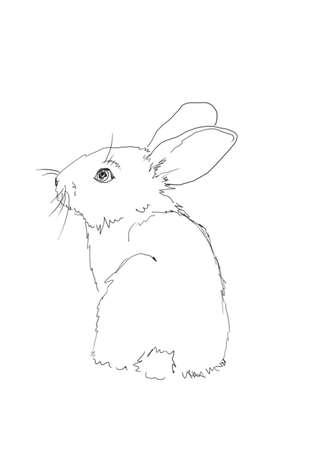 hand drawing line art of small easter rabbit