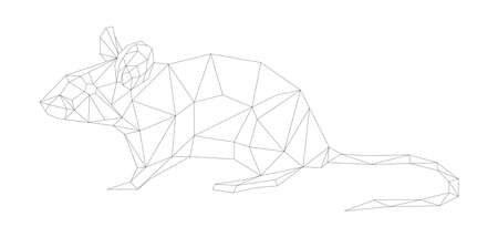 simple line vector polygone art of mouse Illustration