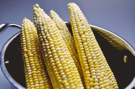 vegetarian food - juicy yellow corn