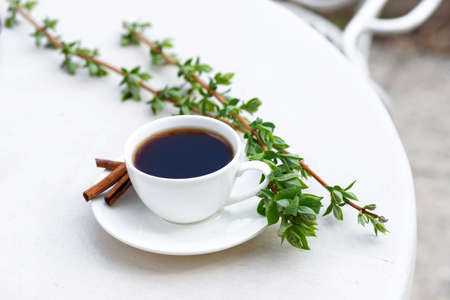 Aromatic coffee in a summer cafe in a white cup with cinnamon sticks. Beautiful green leaves. Natural lighting