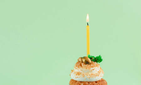 One cupcake with a candle on a neon mint background. Holidays concept
