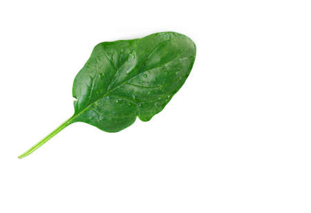 Leaf of green fresh spinach isolated on a white background. Healthy eating Stock fotó