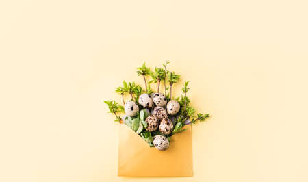 Overquail eggs with young sprigs of green plants on a light background. Holiday content, a place for text