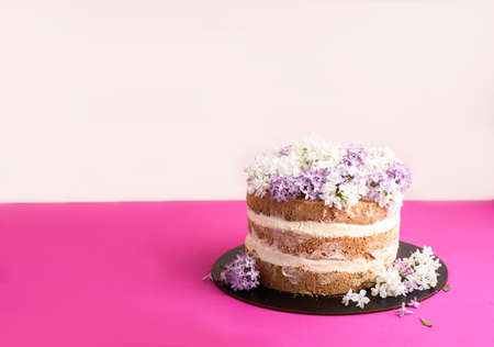Biscuit cake with sour cream, soaked in coconut shavings and pineapples, on a light pink background. Place for text