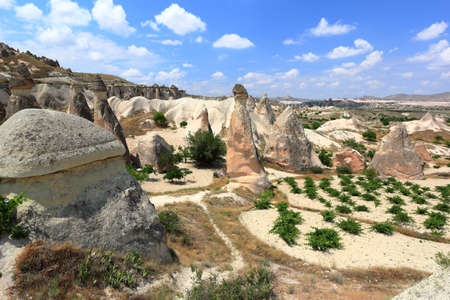 Panoramic view of the Fairy Chimneys in Göreme National Park. Cappadocia, Central Anatolia, Turkey.