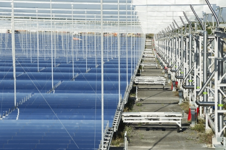 Solar boilers based on unique Fresnel collector technology