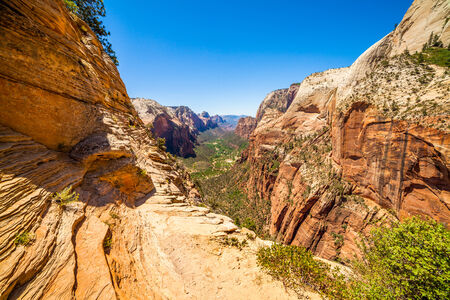 Canyon viewed from Angels Landing, ZNP, Utah, USA photo