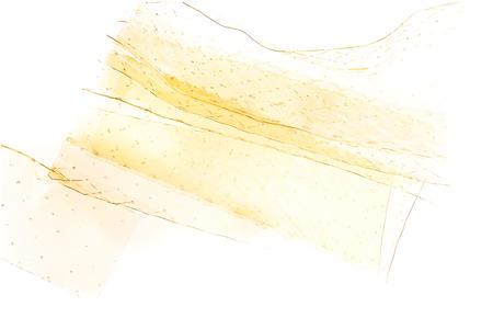 gelatine: Many of gelatine leaves on white background Stock Photo