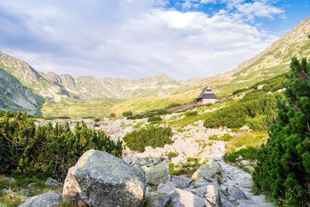 flowery: Wooden hut on flowery meadow in Tatra Mountains National Park, Poland