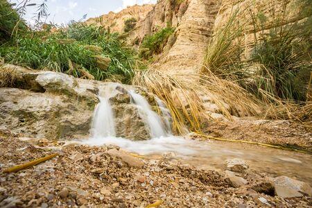 gedi: Waterfall in En Gedi Nature Reserve and National Park, Israel