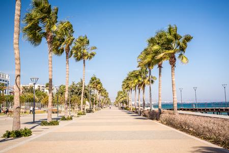 limassol: Seaside promenade with palms  in Limassol, Republic of Cyprus