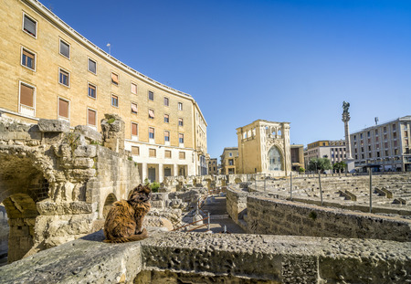 Ancient amphitheater and cute cat in city center of Lecce, Puglia, Italy Stock Photo