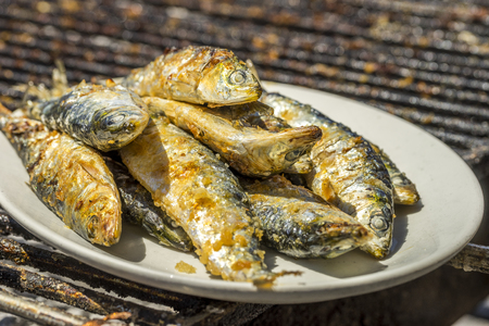 Delicious barbecued sardines - traditional Portuguese food, Porto, Portugal