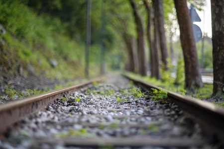 Old railway track along old trees and hill in the summer, Sintra, Portugal Stok Fotoğraf