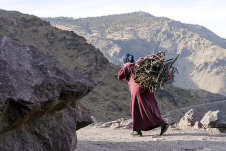 Berber woman carrying fire wood on his back in High Atlas mountains, Imlil, Morocco Фото со стока