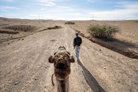 Riding a dromedary camel on Agafay desert with local guide, Marrakech, Morocco