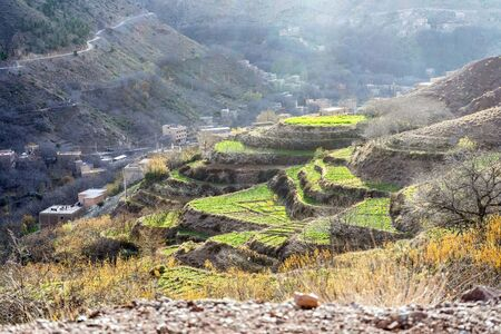 Beautiful terraced fields in high Atlas mountains, Imlil, Morocco